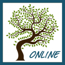Online Offering: Series – Path to Transformation