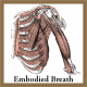 A ReX Method™ Workshop: Embodied Breath! April 14