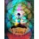 Chakra Meditation Series (July–August)